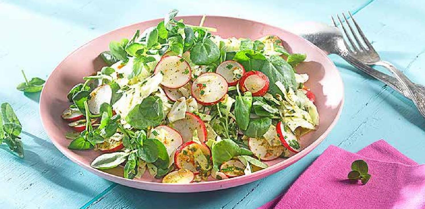 Zelný salát s ředkvičkami a řeřichou